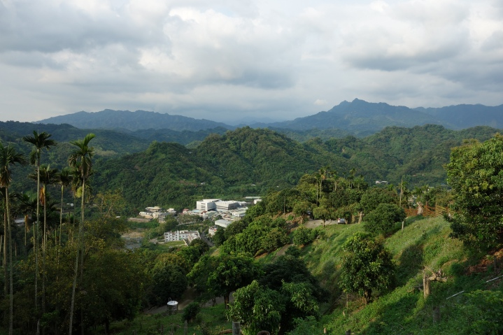 view from house in Taiping District