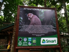 the monkeys were pretty tame and not as aggressive as usual so I guess the signs are working