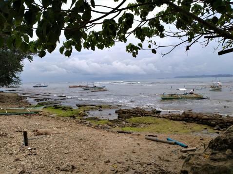 nearby beach
